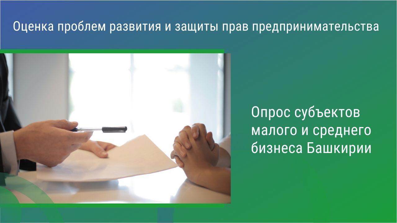 Оценка проблем развития и защиты прав предпринимательства